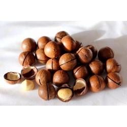 Макадамия, 500 грамм